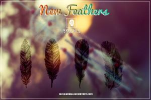 New Feathers | Brushes by CeciiDeRose