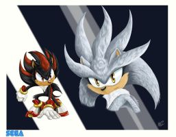 Sonic Characts art by DrakainaQueen