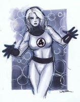 Invisible Woman by ukosmith