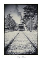 The steam train by calimer00