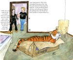Master the Tiger: Tiger in the Box by PaulEberhardt