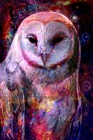 Cosmic Owl by cqillustration1111