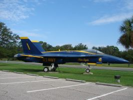 Blue Angels Parking 6 by FantasyStock