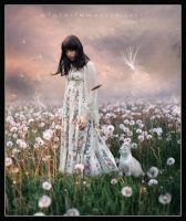 A field of Dandelions by EmberRoseArt