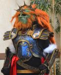 Hyrule Warriors Ganondorf by jaredjlee