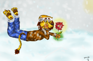 snow and the flower poinsettia by thelionjack