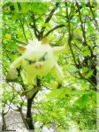 Mankey in the forest by Toshikun