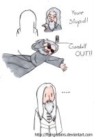 Gandalf the Awesome by FlyingRobins