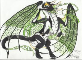 dragon Noir! (finished!!) by AmericanBlackSerpent