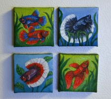 Betta Painting Magnets by greyviolett