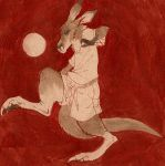 soccer roo by luve