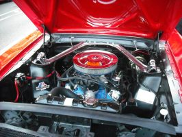 Mustang Engine by betterwatchit