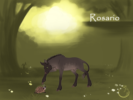 Rosario I colt I lesser royal by WolfsMoon1