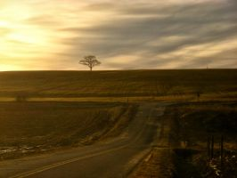 Sunset Country Road in Nova Scotia by ShawnaMac