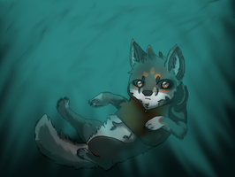 Falling In To The Water... by TheWolf2000