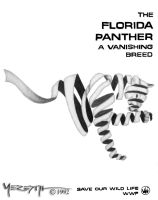 Vanishing Breed - Fla Panther by Citarra