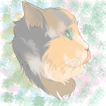 Cat by JakybliS