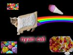 real nyan cat! by journeylove123