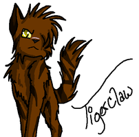 Tigerclaw is phail by Graystreak