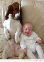 Dog-sitting-like-baby1 by mody-hashim