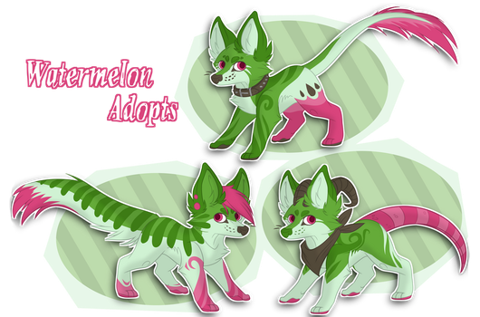 Watermelon Themed Adopts //Action OPEN by StrayTheMushroomKid
