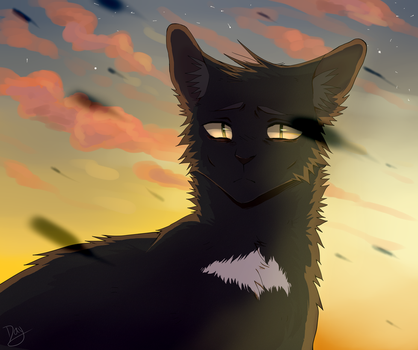 ravenpaw by kotenokgaff on - photo #1