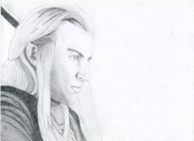 Haldir from Lord of the Rings by Emerald25