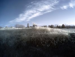 Cold Field without Snow by yaschaeffer