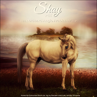 Shay by Explicit18