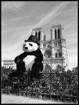 Mr.Panda Goes To Paris by fabriloddo