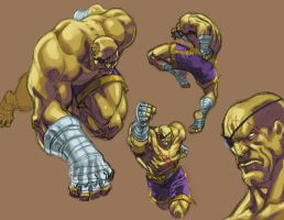 Sagat Colored by santivill