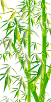 Bamboo by DidItMyWay