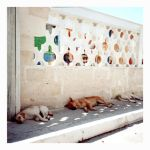 Salento 013 - siesta by ladyshave