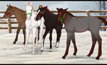 Mai little nordy christmas foals by PaleMount