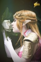 [The Legend of Zelda] Memories by YunaB-Rabbit