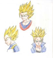 DBZ Characters: Goku, Vegeta, and Trunks by ninetailz3000