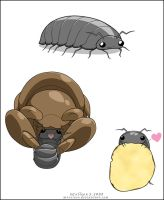 Roly-poly Pillbug Potato-chan by mreviver