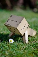 Push-up Danbo by Siilver1984