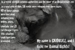 I fight for animal rights. by GKIDRULZ