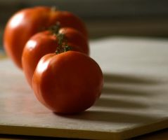 Tomatoes in Half-Light by alimuse