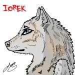 Iorek The Wolf by RyoScar