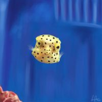 Yellow Boxfish by Inuibuki