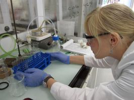 An Organic Chemist at Work by Astridyl