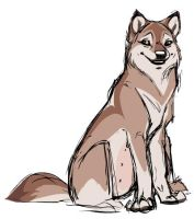 Another Wolf Concept... by shoomlah