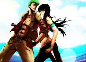 Zoro and Robin by ibroid
