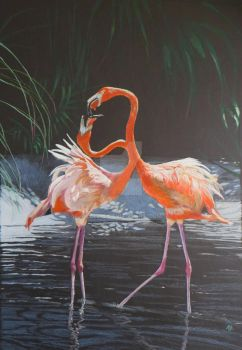Flamingo 005 by zeldis