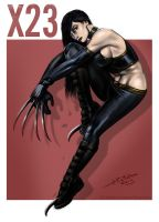 X23 by jameslink