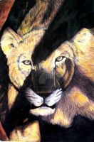 Lioness by Ms-Anthropic