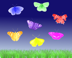 Colorful Butterflies by PJ987