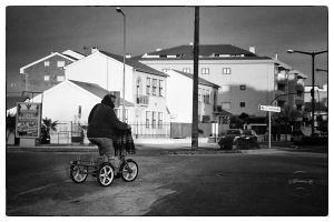 Tricycles by fuxs